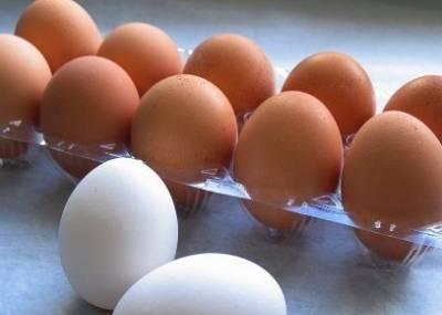 八種食物隔夜吃會中毒隔夜菜易致癌需小心