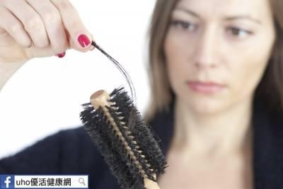 煩惱掉髮嗎?生髮食物就是「它」