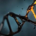 血癌患者對基因療法反應良好