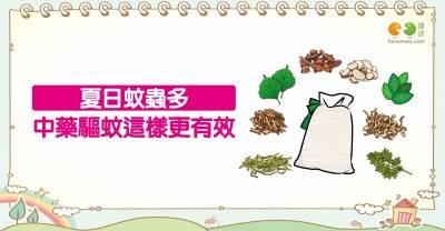 中藥驅蚊怎麼用?|全民愛健康 蚊蟲篇14