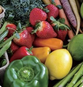 「只吃植物性的食物,完全不吃肉」其實是錯的?前台北市衛生局局長宋晏仁推薦的「211全平衡瘦身法」這樣立行...