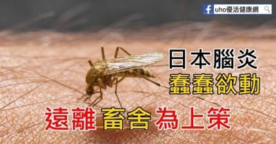 注意防蚊!彰化首例日本腦炎現蹤~「這幾招」可以有效預防!