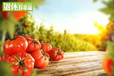 「這些食物」都是天然的防曬乳!3種防曬好食材大公開...蕃茄具有抗氧化作用,每天「這個時間」吃最好...