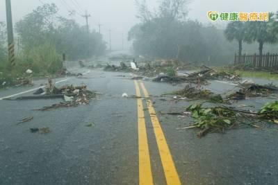 颱風過後務必做好清潔打掃 避免疫病威脅