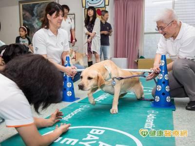 惠光推廣導盲犬體適能 強化中老年犬肌耐力