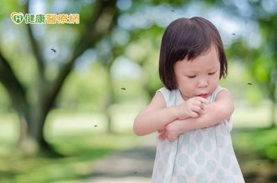 防登革熱及屈公病 前往流行區做好防蚊
