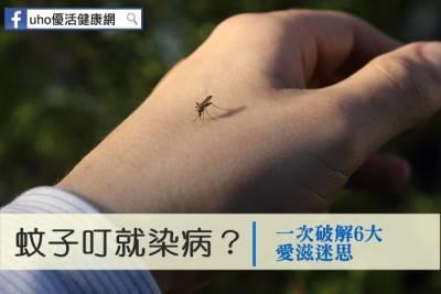 蚊子叮就染病?一次破解6大愛滋迷思