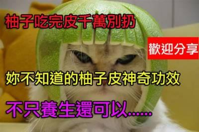 柚子吃完皮別扔:可除冰箱異味柚皮鯰魚盅止咳
