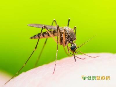 民眾前往瘧疾流行地區 先於旅遊醫學門診諮詢