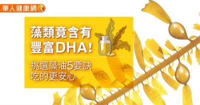 藻類竟含有豐富DHA!挑選藻油5要訣,吃的更安心