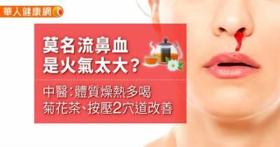 莫名流鼻血是火氣太大?中醫:體質燥熱多喝菊花茶 按壓2穴道改善