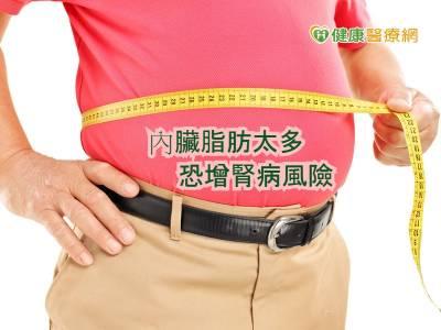 肥胖又添壞處 內臟脂肪增腎病風險