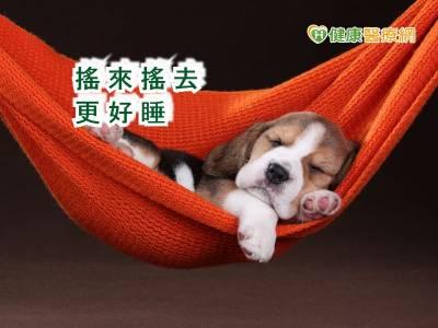 像寶寶那樣睡 搖籃改善睡眠品質