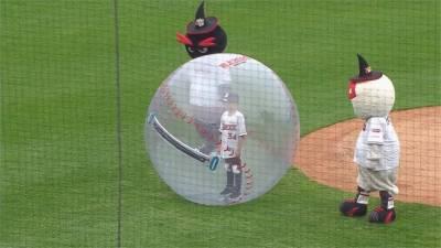 棒球/在透明棒球裡開球!韓職秀社交距離防疫創意