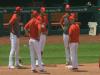 MLB/紅雀爆13人感染武漢肺炎 和老虎4連戰延賽