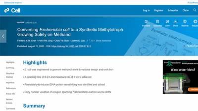 合成嗜甲醇菌改善碳循環 中研院研究登上《Cell》