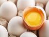 動物性與植物性蛋白質哪個好?如何分辨?如何吃出超級免疫力?