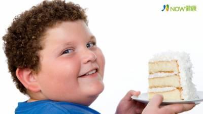 小時候胖就是胖! 長不高 肝衰竭 糖尿病恐跟一輩子