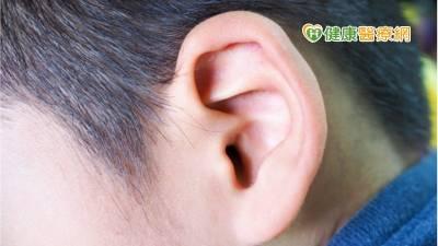 孩子反覆感染中耳炎會影響聽力嗎? 專業醫師解惑
