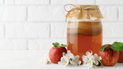風靡歐美的康普茶功效是什麼?康普茶讓你⼀次減脂 順暢 好⼼情