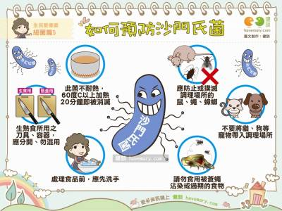 [漫漫健康] 如何預防沙門氏菌|全民愛健康 細菌篇5|健談