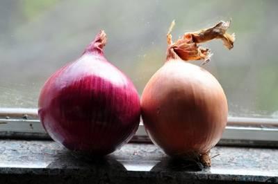 這戶農家的人一年到頭沒有感冒過。醫生發現原因,竟是因為一顆洋蔥....
