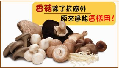 香菇除了抗癌外,原來還能這樣用