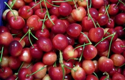 你會吃櫻桃嗎?看完毛骨悚然,一定要知道櫻桃怎麼清洗!!