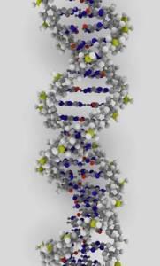 史上首次透過基因即可診斷重度智障 健康達人網