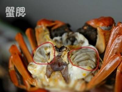 螃蟹有四個部位不能吃,你該不會現在才知道?