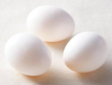 雞蛋好多款,營養成分不同嗎?|台灣好食材