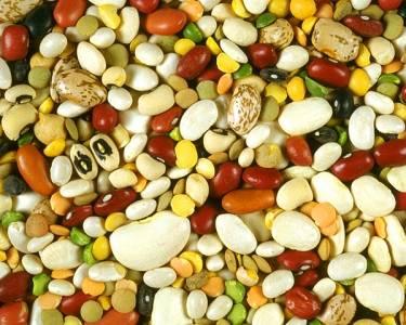鎂的奇蹟:未來10年最受矚目的不生病營養素