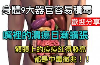 身體9大器官容易積毒 有氧運動幫皮膚排出毒素